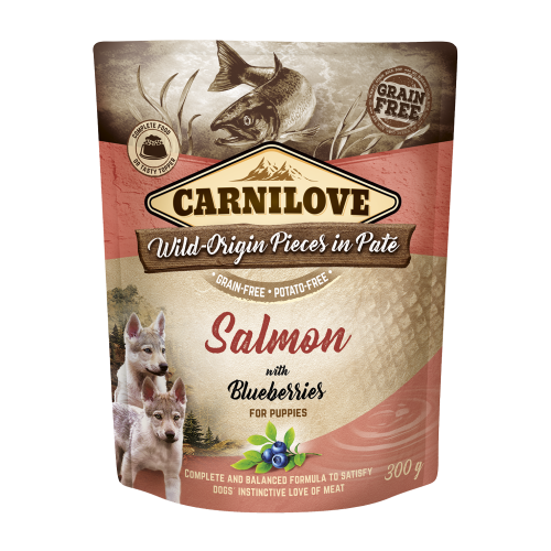 Carnilove® Pouches Salmon with Blueberries